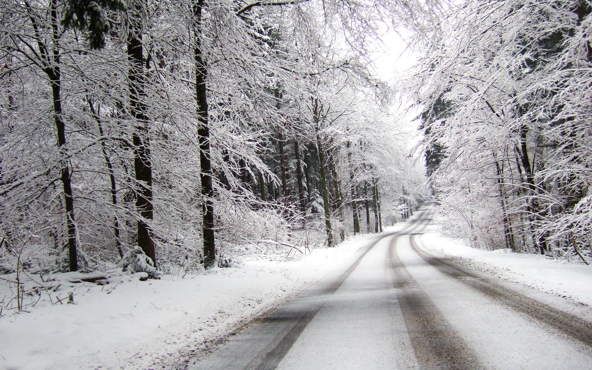 Забрана за камиони на патот Виница Берово и Виница Кочани поради обилни врнежи од снег