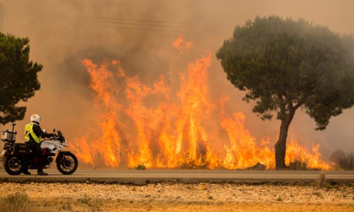 Пожар во Шпанија  Стихијата е под контрола  евакуирани се 1 800 луѓе