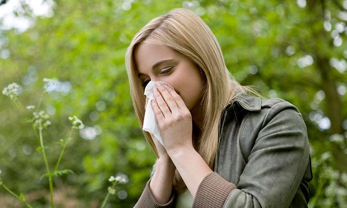 pet-soveti-so-koi-ke-ja-stavite-proletnata-alergija-pod-kontrola