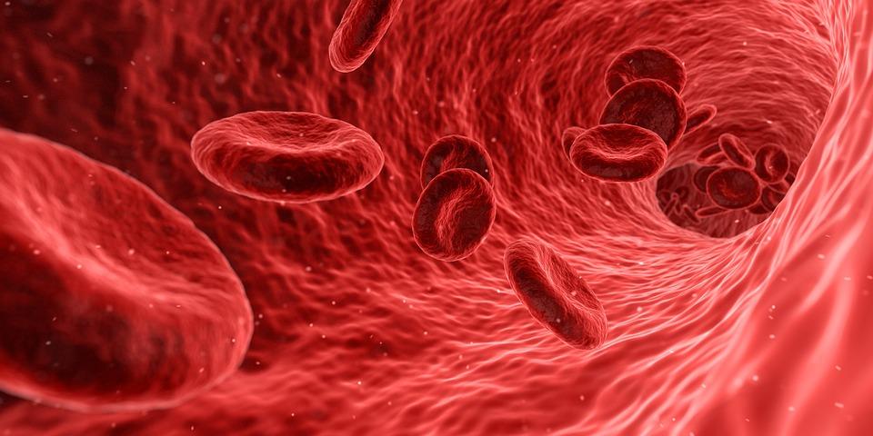 Фактори кои можат да му наштетат на имунолошкиот систем