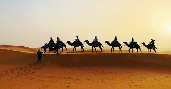 Што се крие под песокот на Сахара?