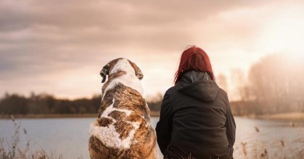 Ако на вашето куче му ги правите овие работи, престанете веднаш