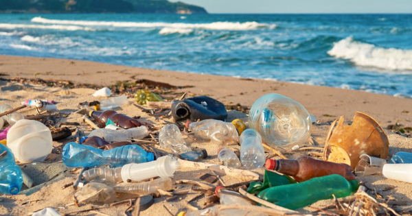 Изум на иднината: Биоразградлива пластика што се распаѓа на сонце и воздух